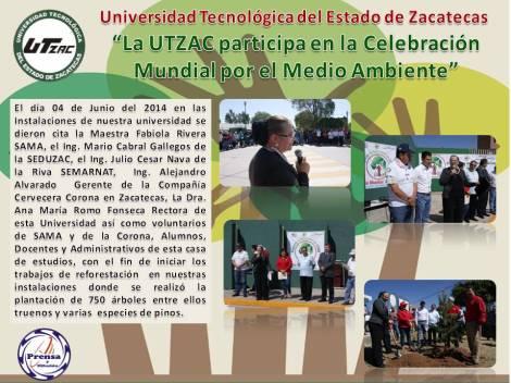 Reforestacion UTZAC 2014